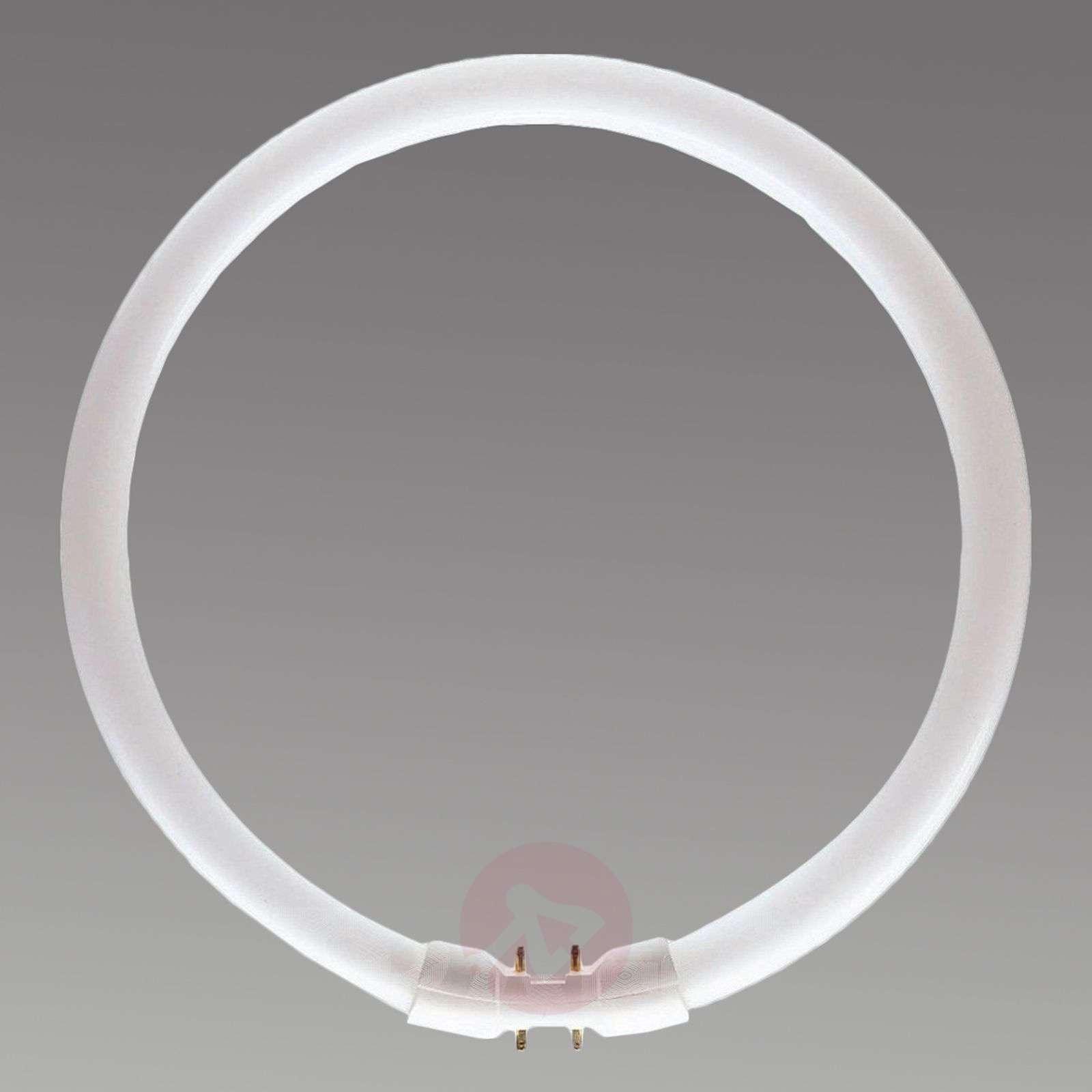 2GX13 40 W 827 rengasloistelamppu-3539116-01