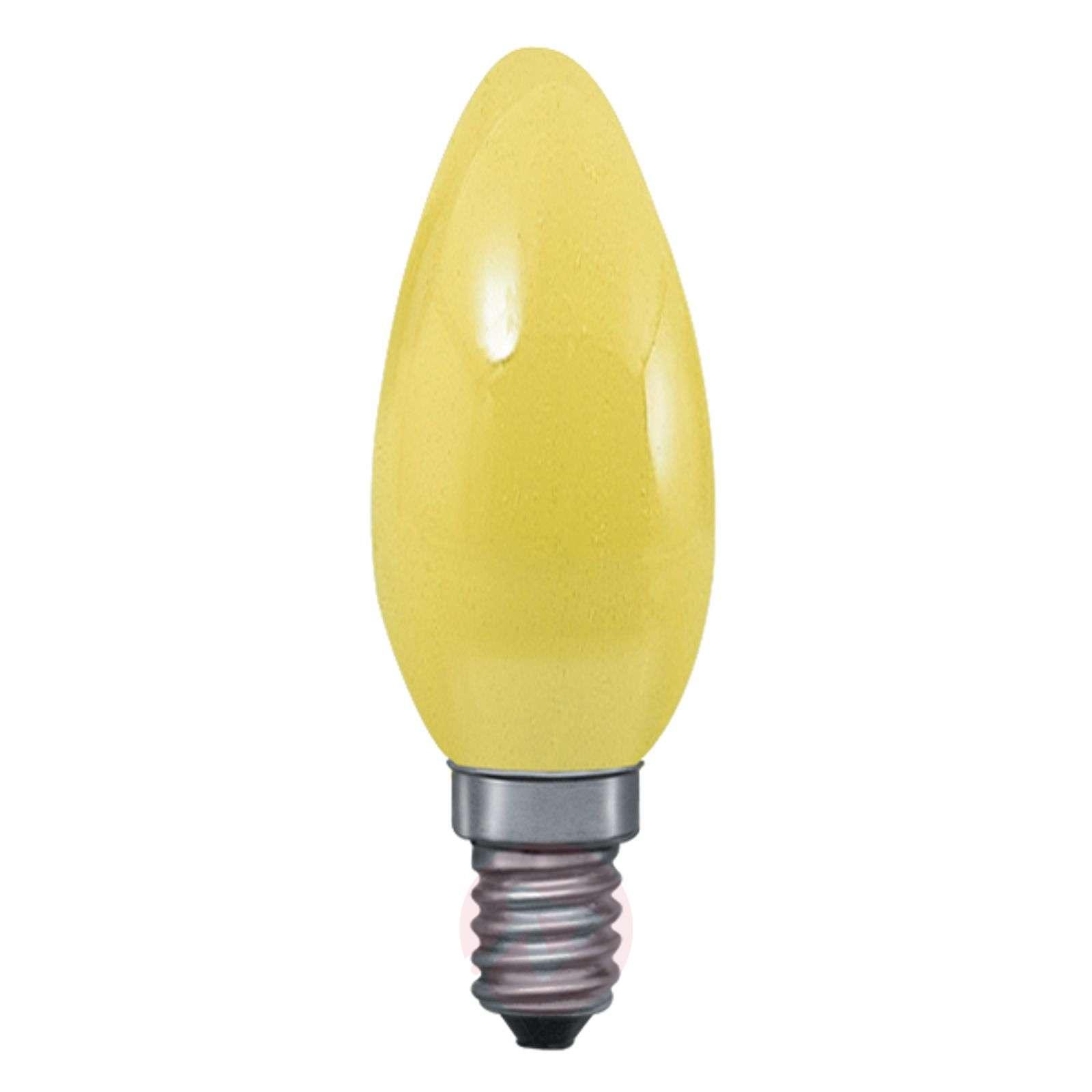 E14 25W kynttilälamppu-7601016X-01
