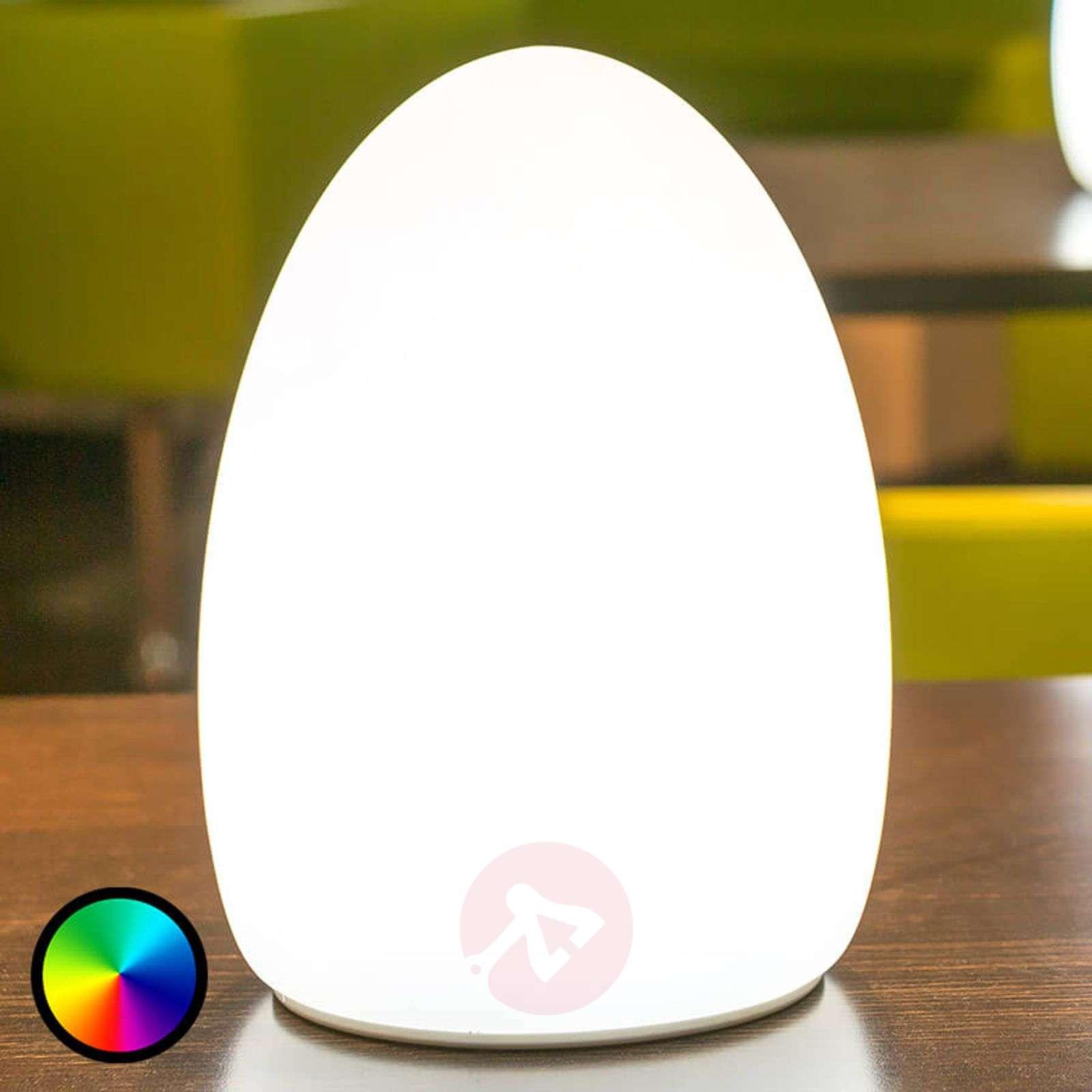 Egg sovelluksella ohjattava koristevalo, akku-8590016-01