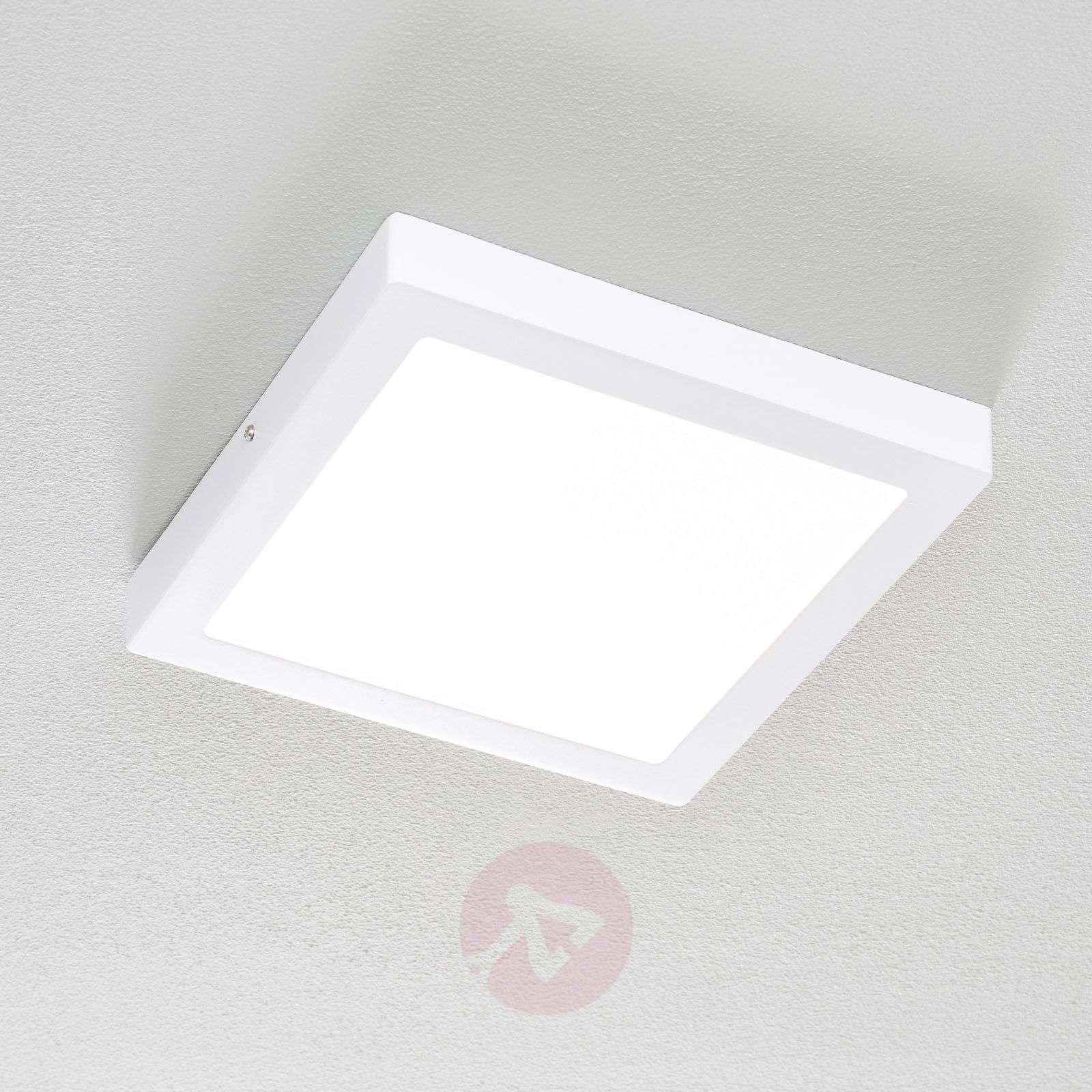 Fueva Connect-LED-kattovalaisin 30 cm, valk.-3032065-01