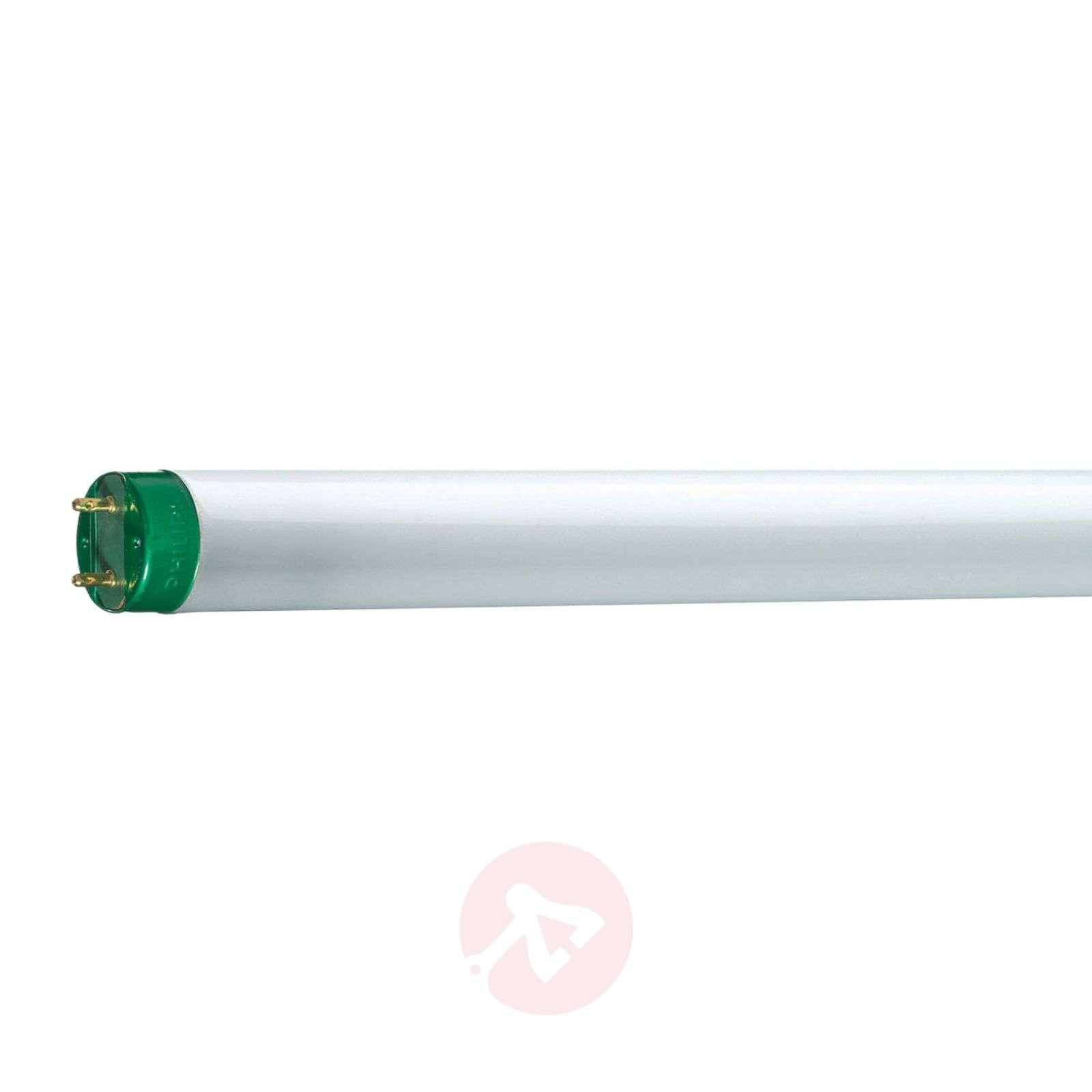G13 T8 Master TL-D Eco Loistelamppu-7530467X-02