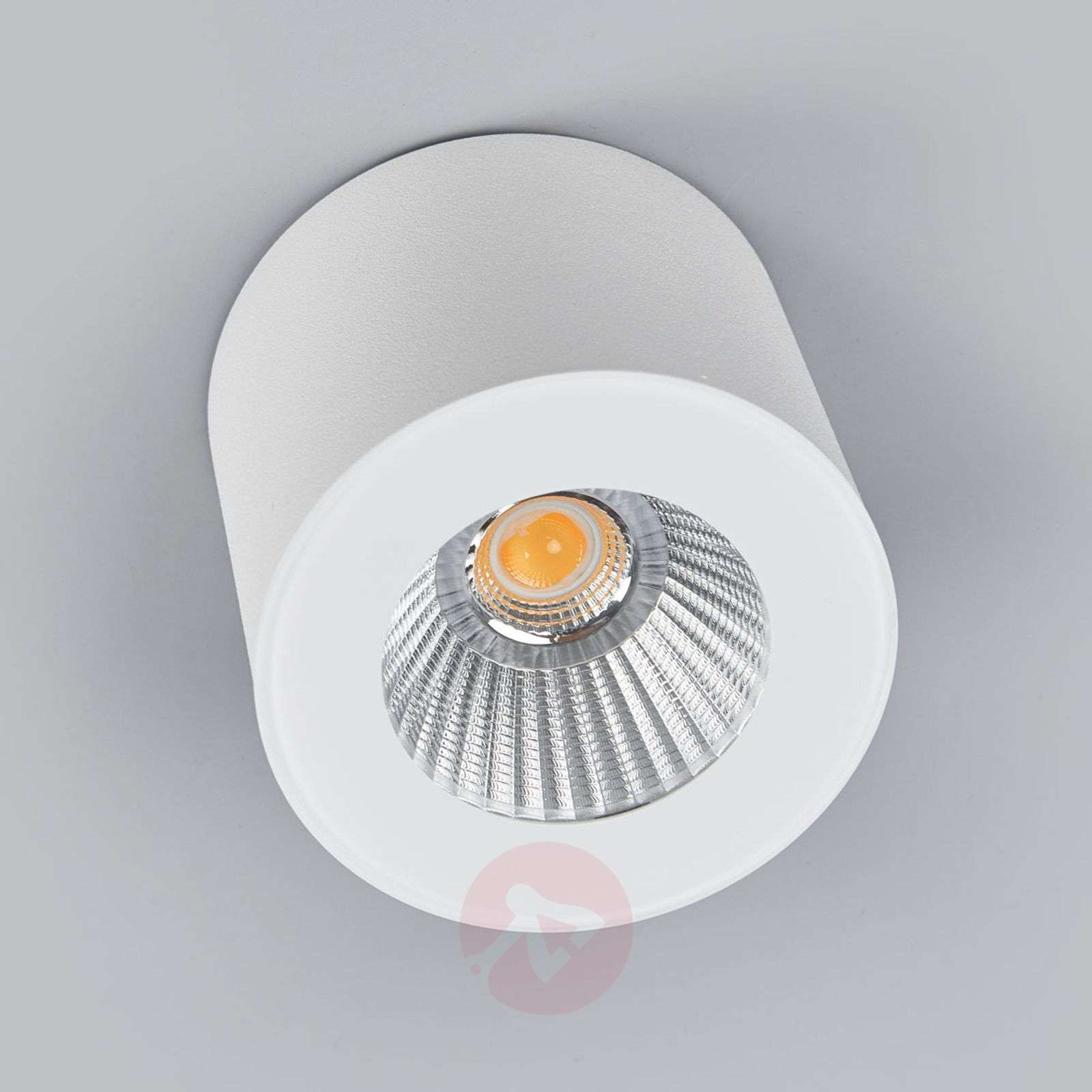 Helestra Oso – LED-kattospotti, mattavalkoinen-4516442-08