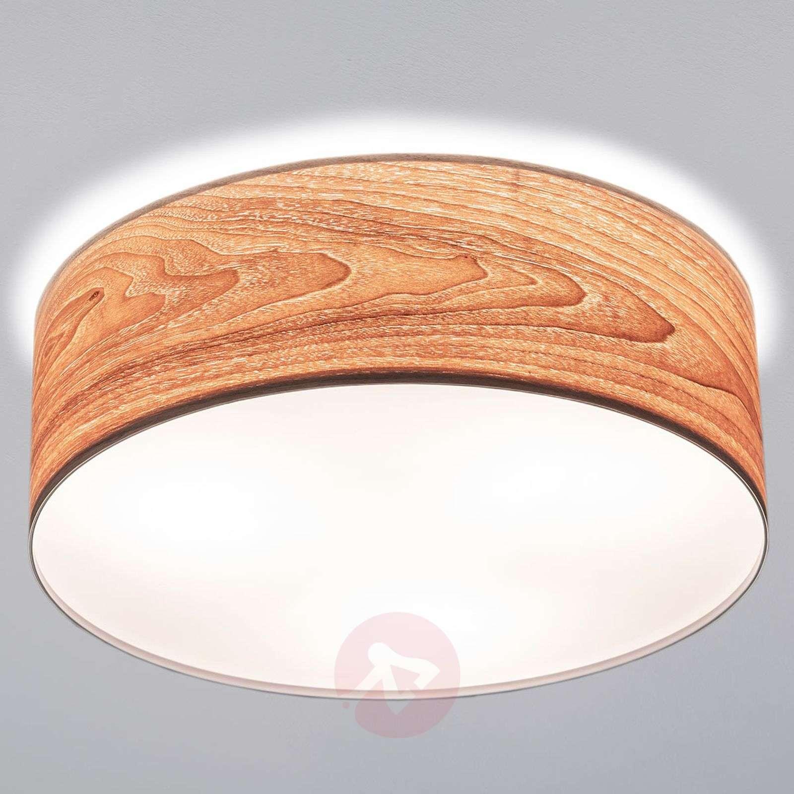 Huippumoderni puinen Liska-kattovalaisin-7601066-01