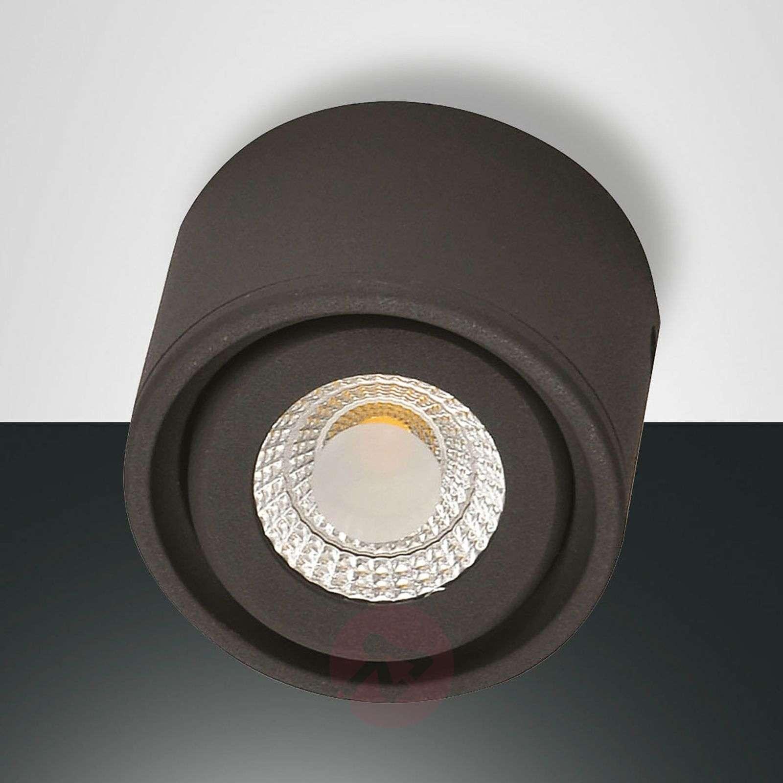 Käännettävä pää LED-alasvalo Anzio-3502629X-02