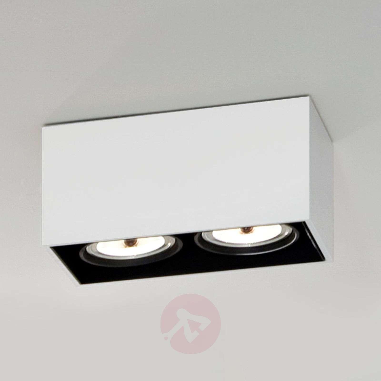 Kaksilamppuinen Compass Box-kattovalaisin-3510245X-02