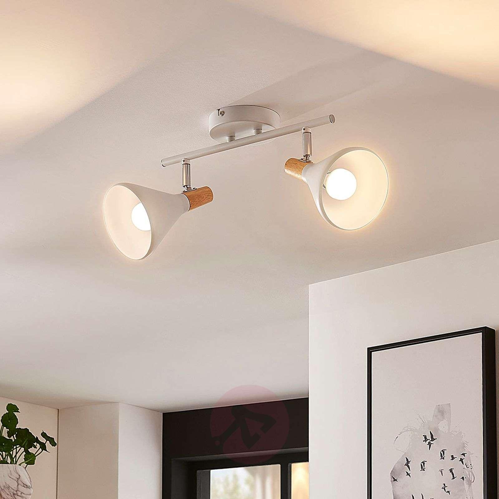 Kaksilamppuinen LED-kattovalaisin Arina-9621805-02