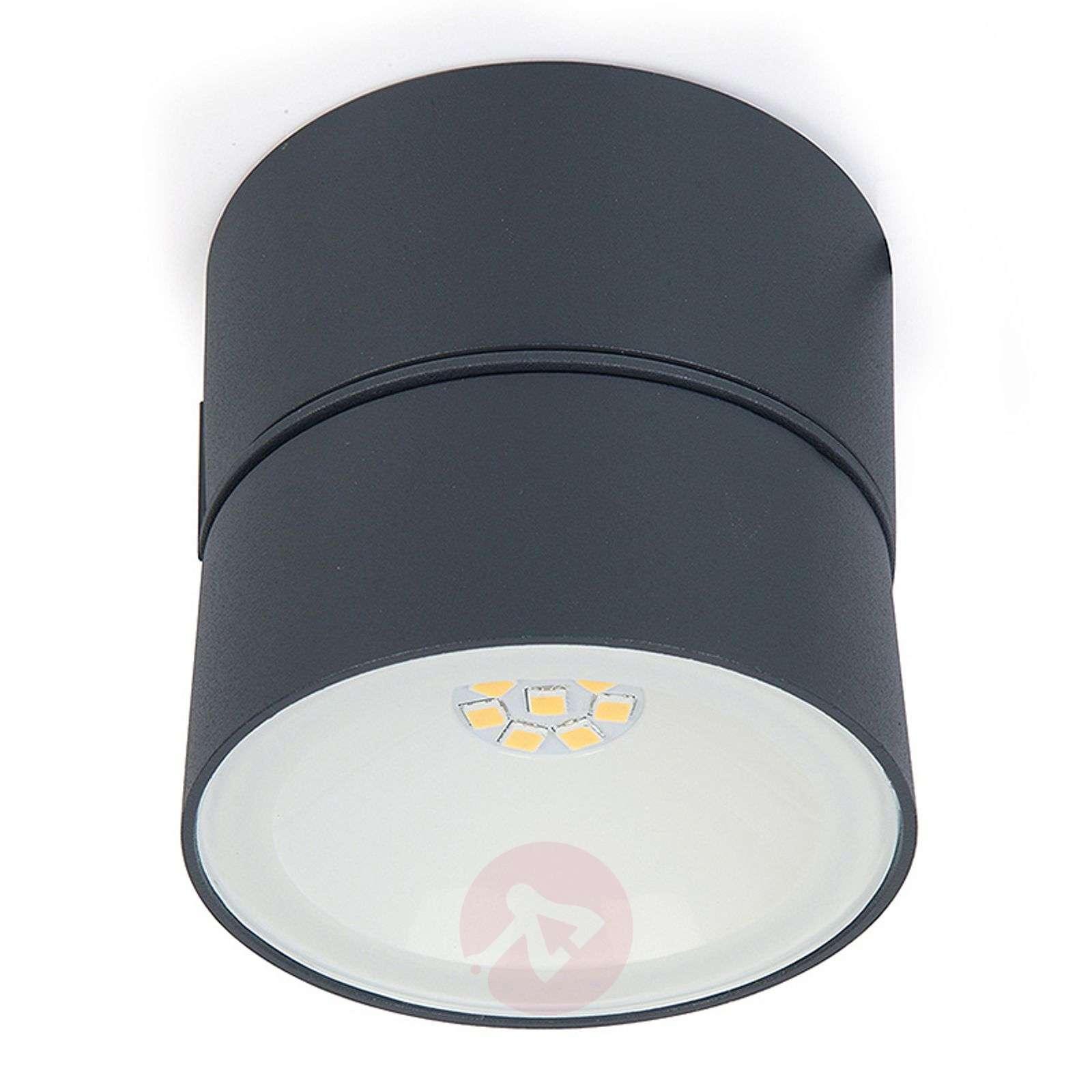 Kallistettava LED-ulkoseinävalaisin Trumpet-3006216-01