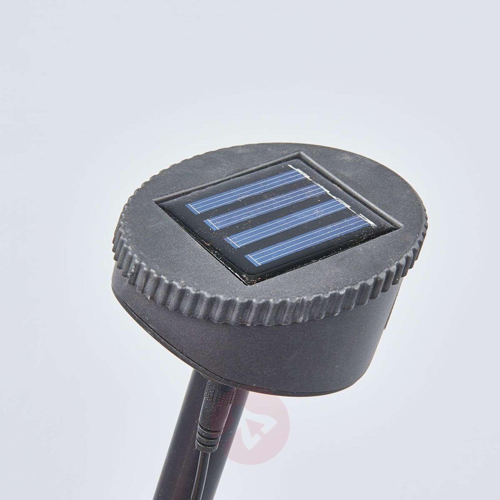 LED-aurinkoenergiavalaisin Felia RGB, 4:n setti-5000260-01