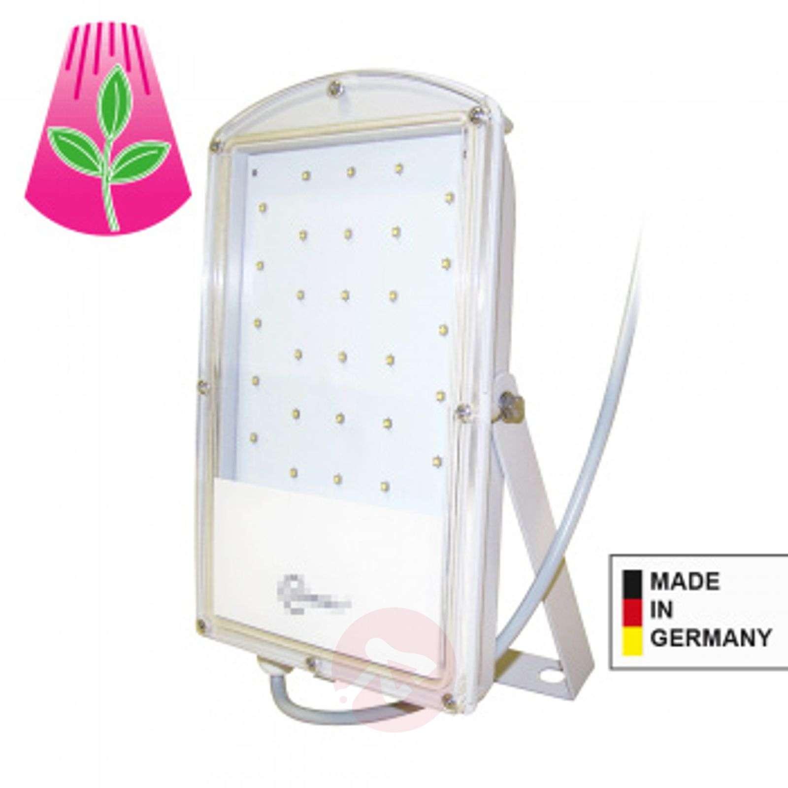 LED-kasvilamppu Astir-2515063-01