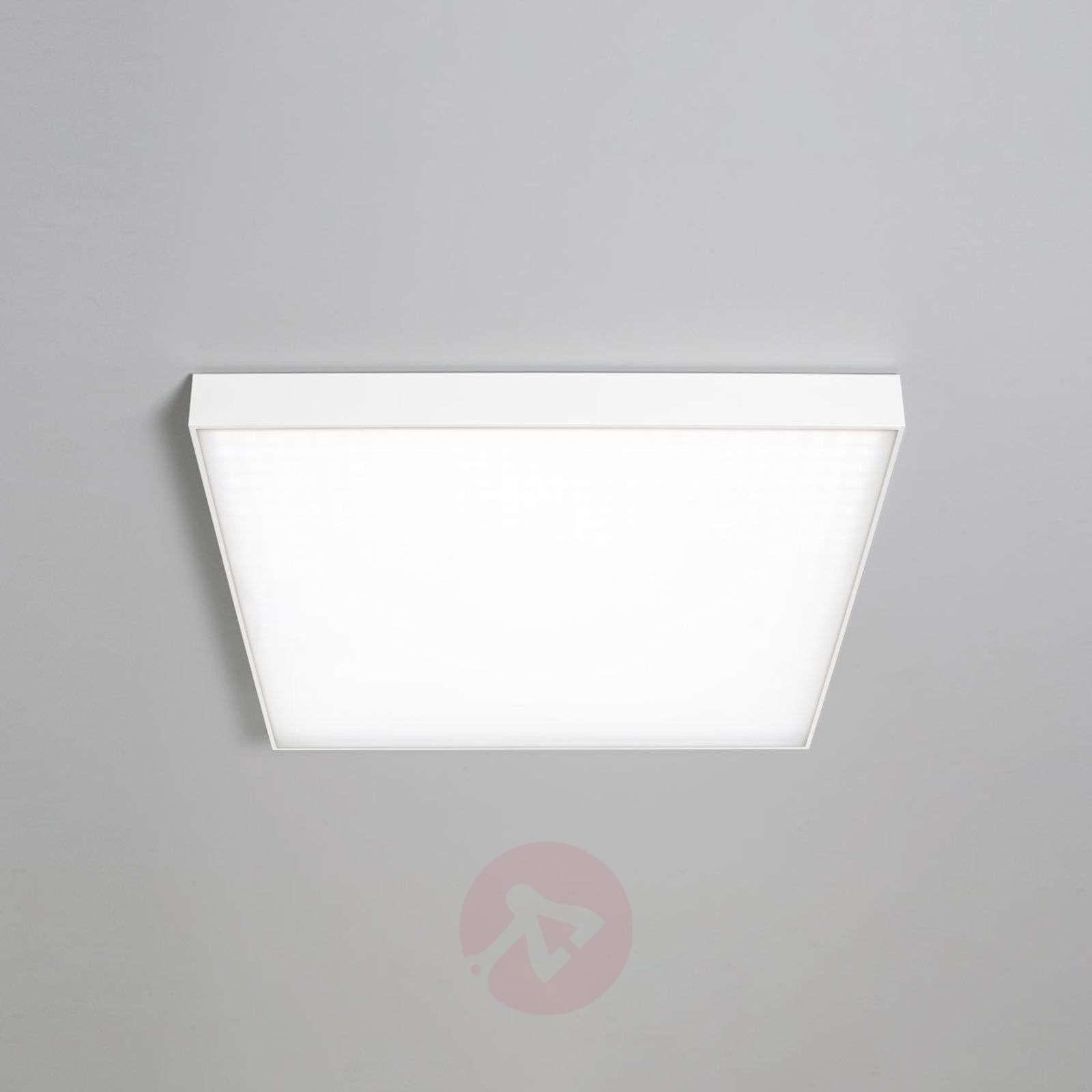LED-kattolamppu Cadan SD 33 cm, valkoinen, 4000K-6523801-01