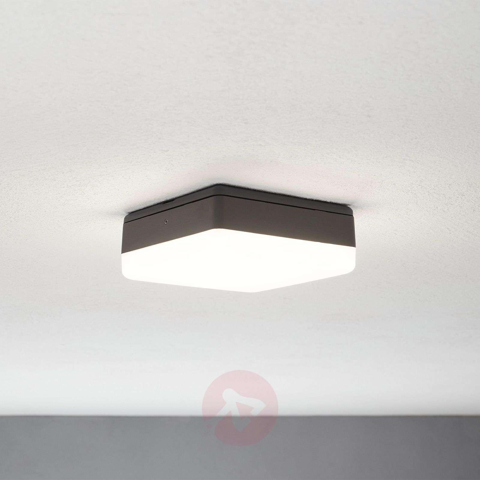 LED-kattovalaisin Thilo, harmaa, 16 cm-9969088-02