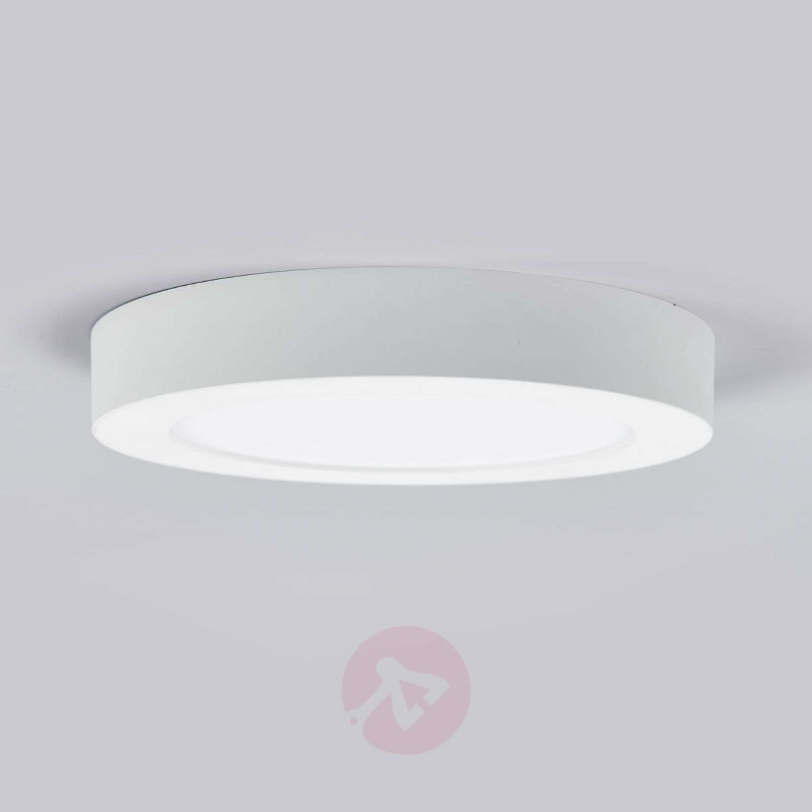 LED-kattovalo Marlo valkoinen 4000K pyöreä 25,2cm-9978065-02