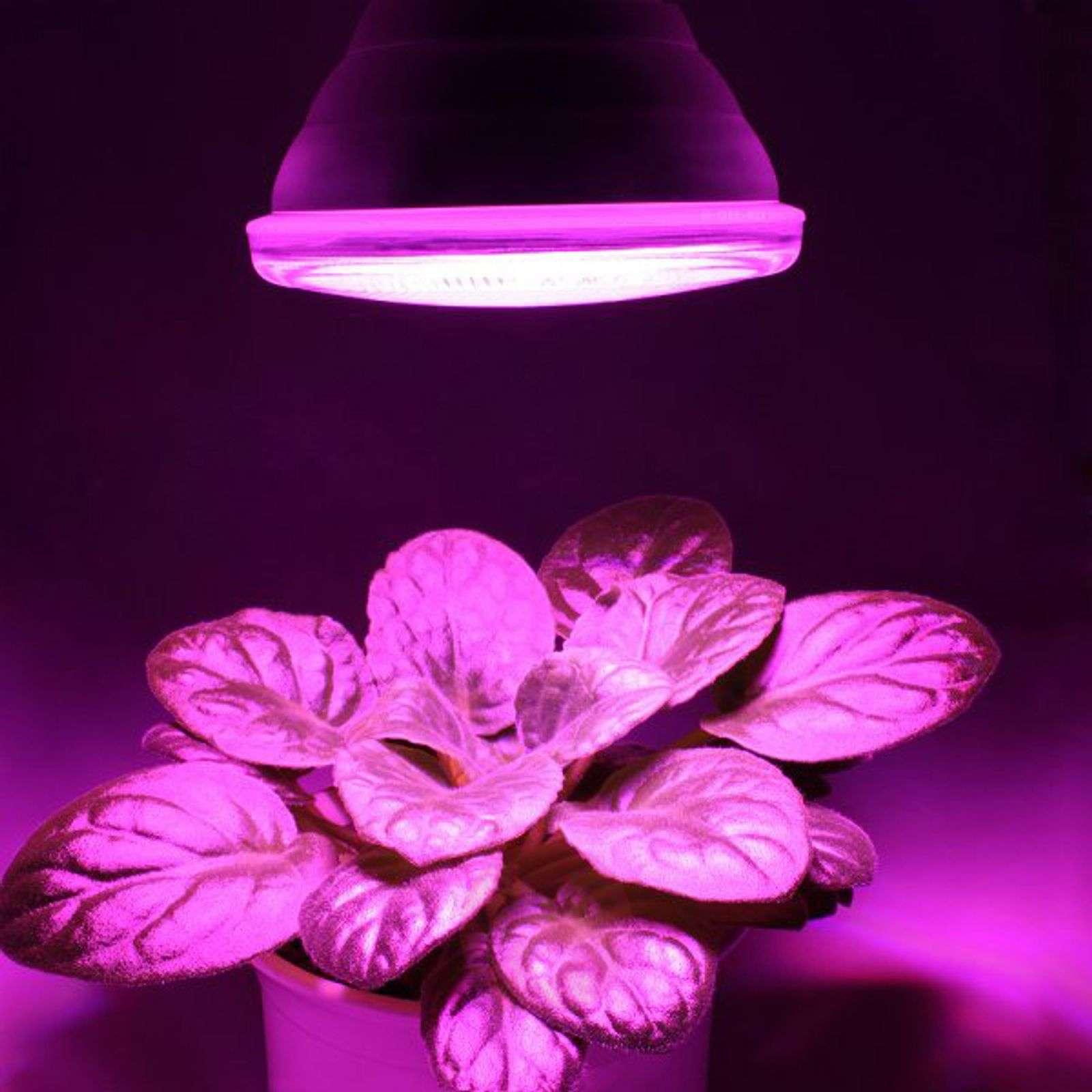 LED-kiinnitinvalaisin GoLeaf kasvivalaisimeksi-2515068-02