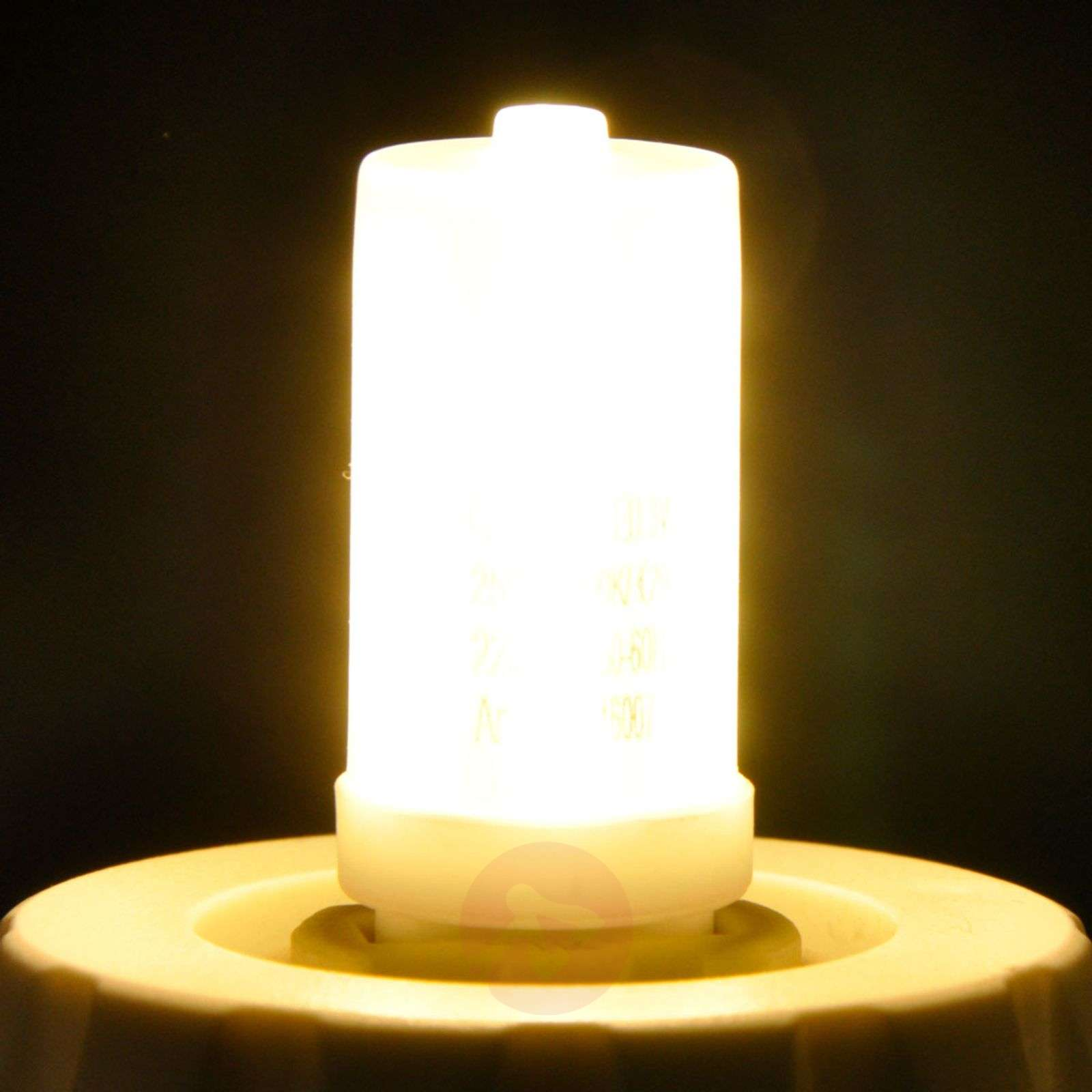 LED-nastakantalamppu G9 3,5W 830 himmennettävä-9646007-06