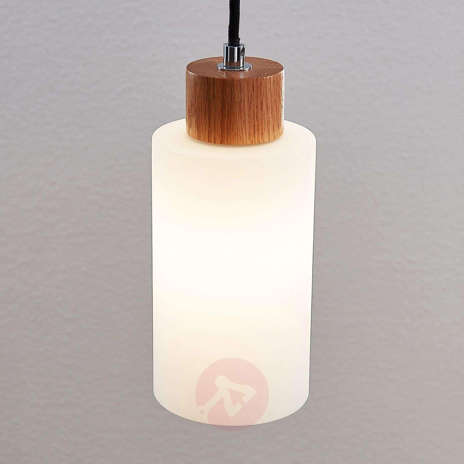 Lindby Nicus puuriippuvalaisin, 1-lamppuinen-9624580-02