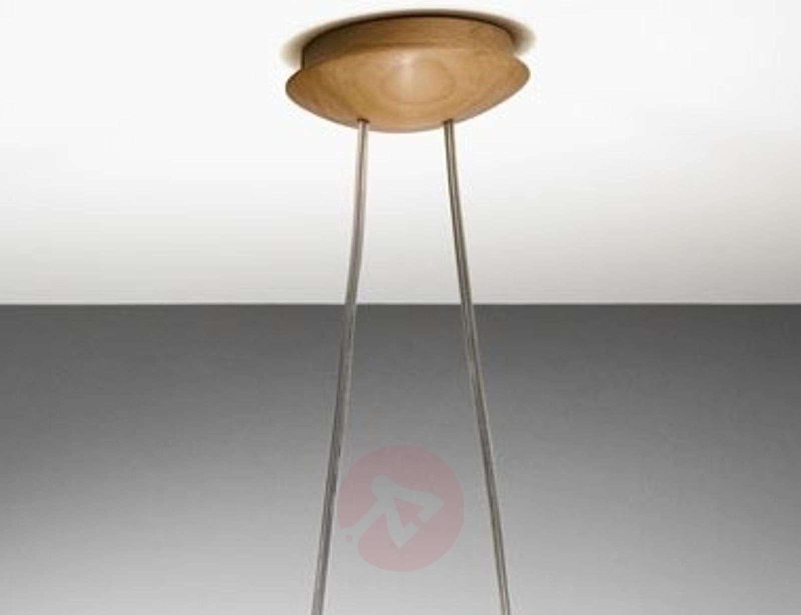 Mikado-riippuvalaisin kauniiseen valaistukseen-2600190-02