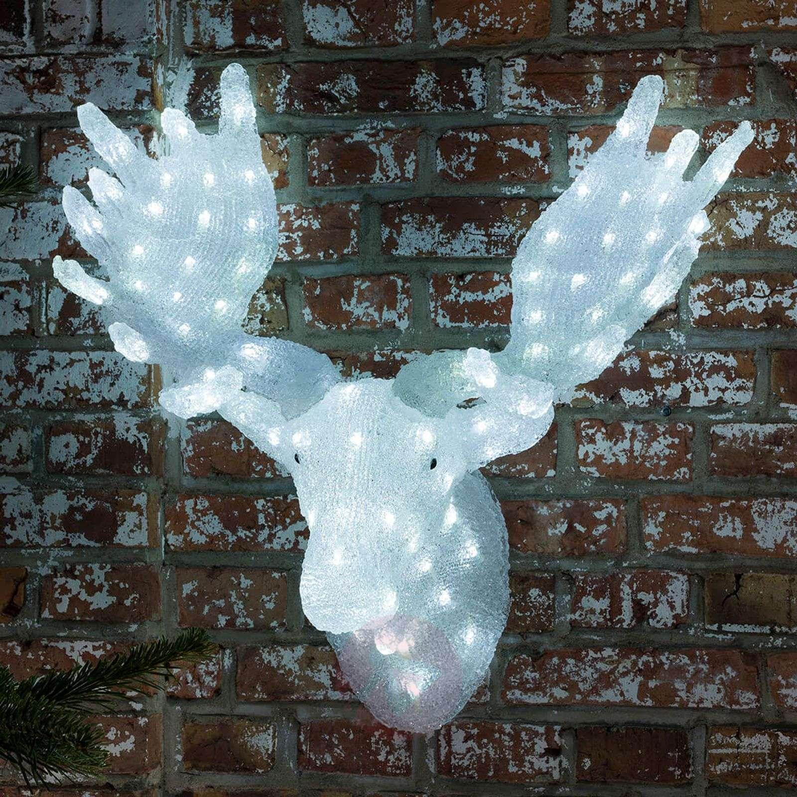 Näyttävä Hirvenpää, LED-valaistus-5524749-01