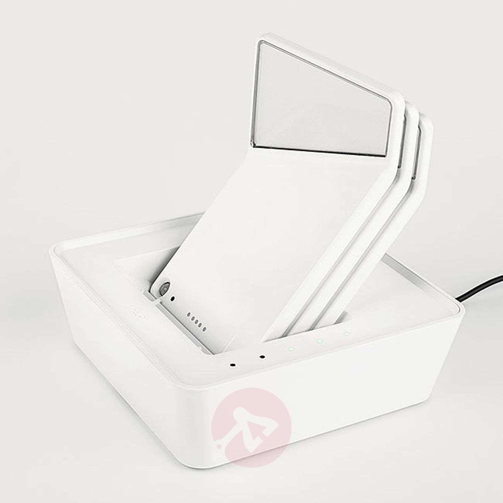 Nimbus Winglet CL-latausasema, Basket Charger-7018054-01