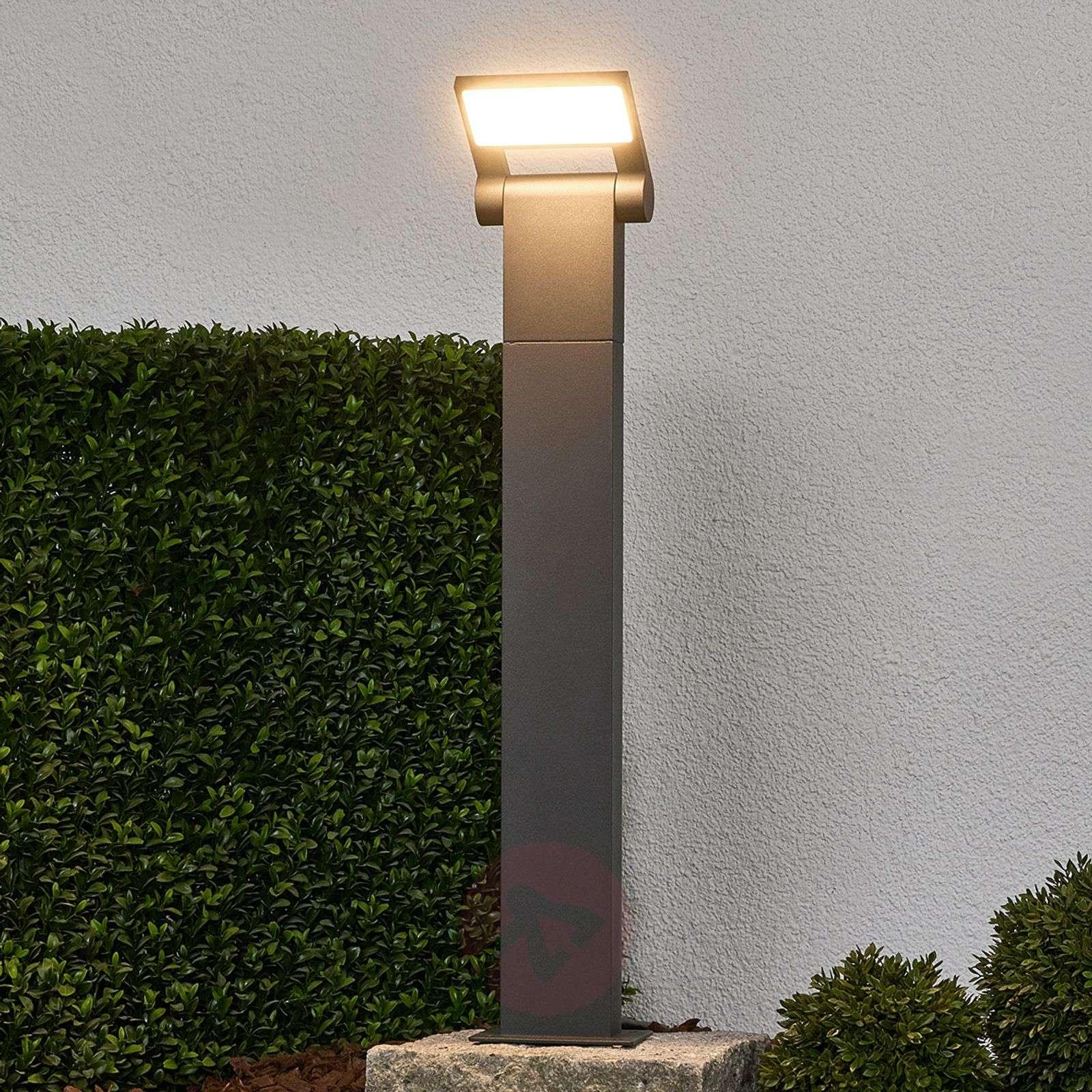 Pollarivalaisin Marius LED-valoilla, 60cm-9619077-02
