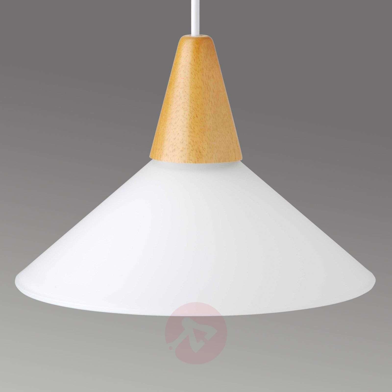 Puristinen Pastell-riippuvalaisin-1508224-02