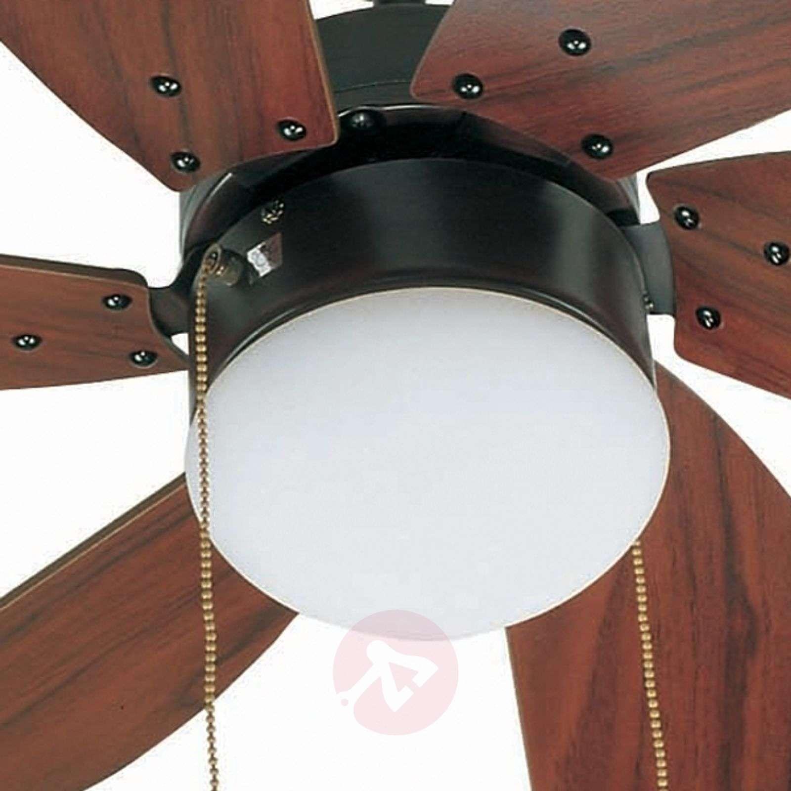 Tummanruskea PALAO-kattotuuletin-3506040-01