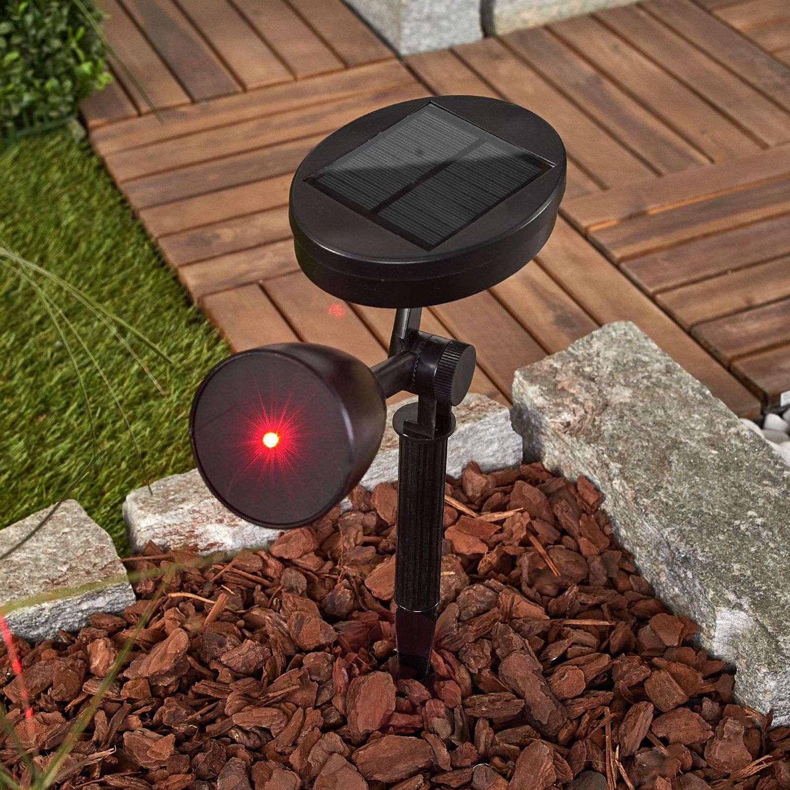 Upea koristevalo Kari-LED-aurinkokennolampulla-9955068-01