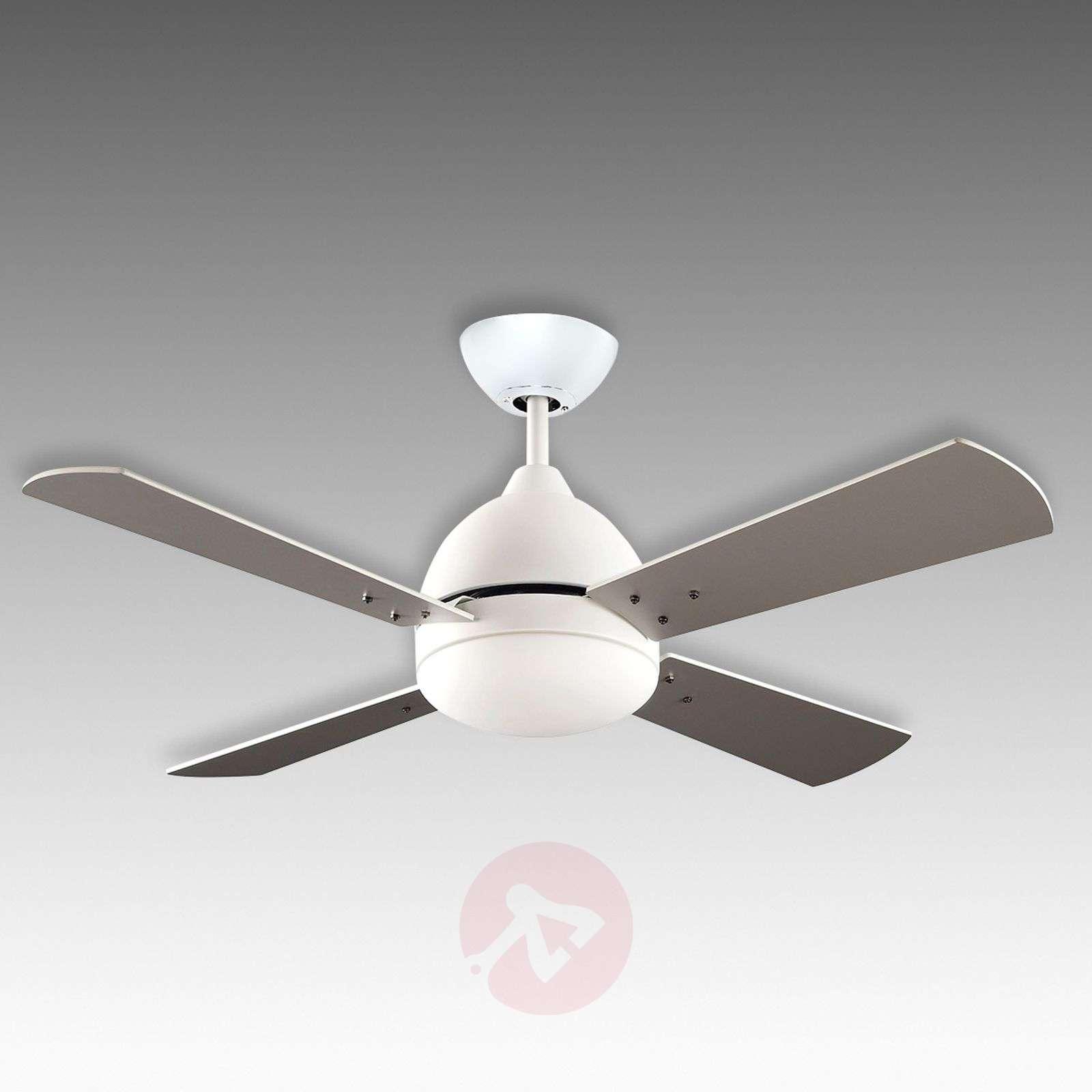 Valkoinen Borneo-kattoventilaattori valolla-6026517-01