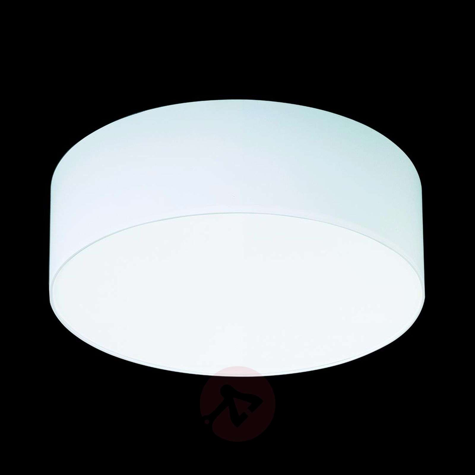 Valkoinen kattovalaisin Mara sintsivarjostimella-4536128X-01