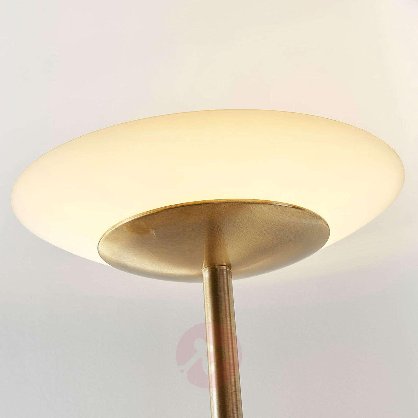 Vanhamessinki LED-lattiavalaisin Ilinca, himm.-9621478-011