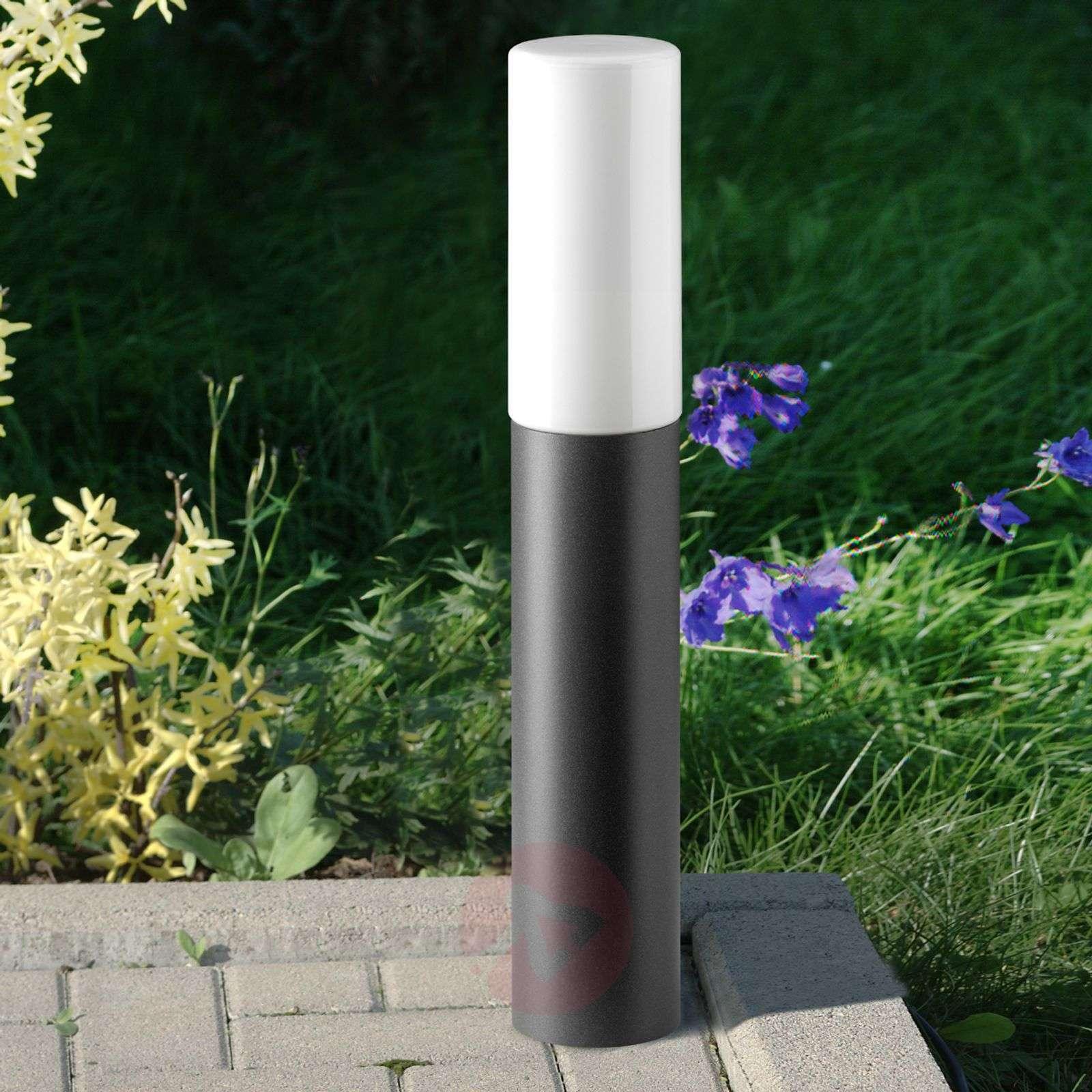 Yksinkertainen Gray-pollarivalaisin-2011212-01
