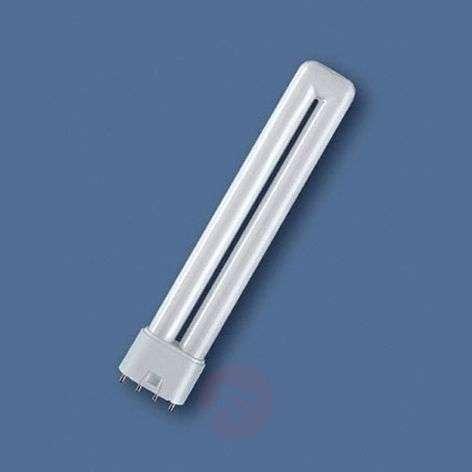 2G11 Dulux L -pienloistelamppu
