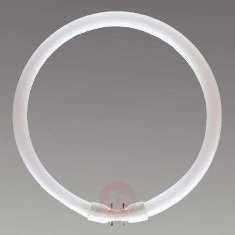 2GX13 40 W 827 rengasloistelamppu