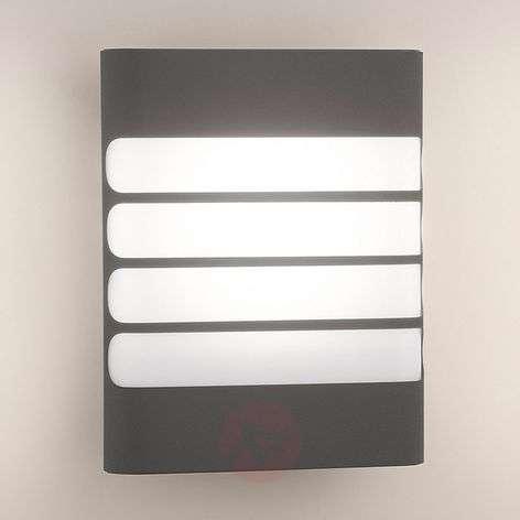 Antrasiitinvärinen LED-ulkoseinävalaisin Raccoon