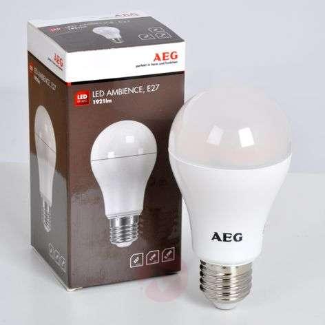 E27 17W 827 LED-lamppu, matta