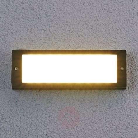 Energiaa säästävä LED-ulkoseinävalaisin Rachel