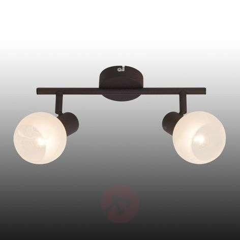 Gabon-kattovalaisin, ruskea-valkoinen, 2-lamppua-1508854-31