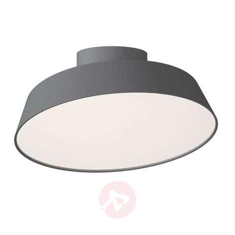 Harmaa LED-kattolamppu Alba, käännettävä varjostin-7005962-31