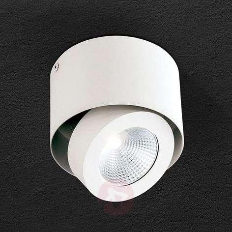 Kääntyvä LED-spotti Meno valkoisena, himmennettävä
