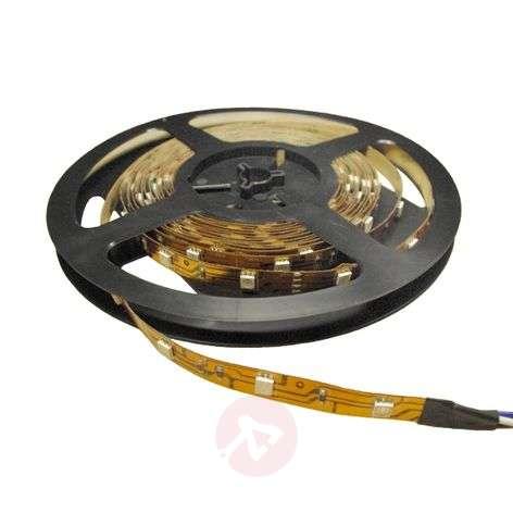Lämpimän valkoinen Power-LED-valonauha 930