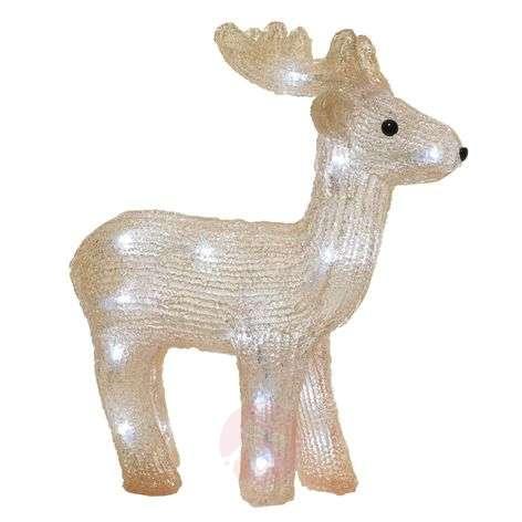 LED-koristekuva peura, paristokäyttöinen, ulos