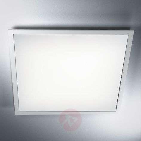 LED-paneeli Planon Plus, neutraali valkoinen-7261228-31