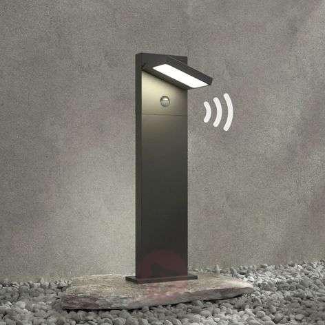 LED-pollarivalaisin Silvan, 65 cm, liikkeentunn.