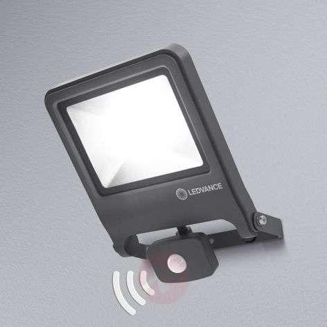 LEDVANCE Endura Floodlight sensor LED-spotti 50W