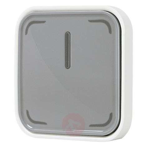 LEDVANCE SMART+ ZigBee Switch, langaton painike
