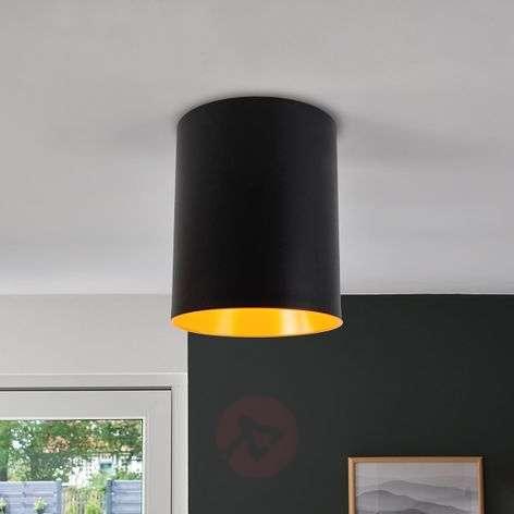 Lieriönmuotoinen designer-LED-kattovalaisin Tagora