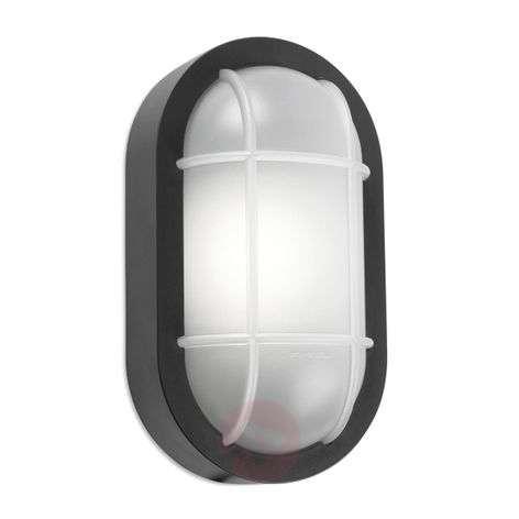 Merihenkinen LED-ulkoseinävalaisin Turtled
