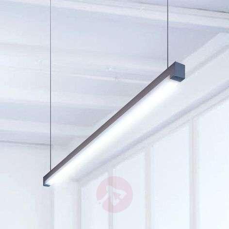 Perusvalkoinen LED-riippuvalaisin Travis-P2