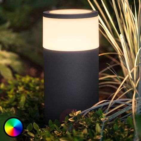 Philips Hue -LED-pollarivalaisin Calla lisäosa