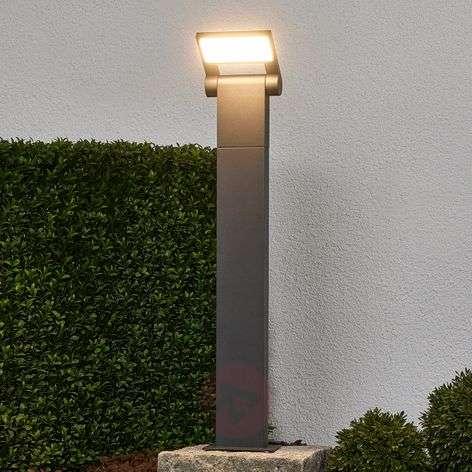 Pollarivalaisin Marius LED-valoilla, 60cm