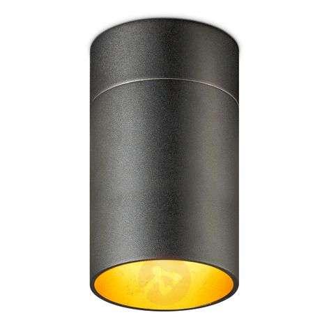 Tehokas LED-kattovalaisin Tudor L 18,5 cm